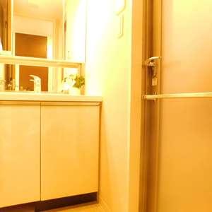 リビオレゾン目白通り(2階,)の化粧室・脱衣所・洗面室