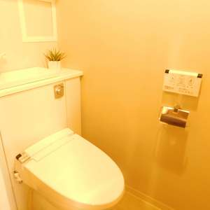 リビオレゾン目白通り(2階,)のトイレ