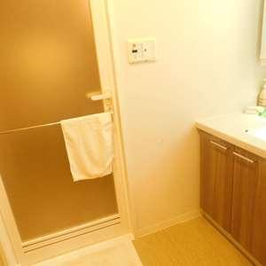 サンクレイドルレヴィール池袋(12階,)の化粧室・脱衣所・洗面室