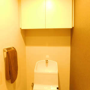 サンクレイドルレヴィール池袋(12階,)のトイレ