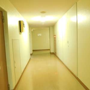 メゾンサンシャイン(10階,3899万円)のフロア廊下(エレベーター降りてからお部屋まで)