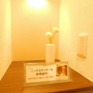 メゾンサンシャイン(10階,4099万円)のお部屋の玄関