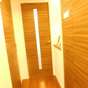 メゾンサンシャイン(10階,4099万円)のお部屋の廊下