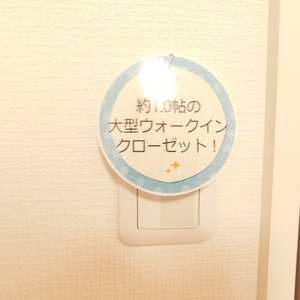 メゾンサンシャイン(10階,4199万円)の洋室