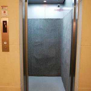 トーシンフェニックス高円寺弐番館のエレベーターホール、エレベーター内