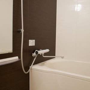 トーシンフェニックス高円寺弐番館(2階,)の浴室・お風呂