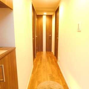 ライオンズガーデン哲学堂(1階,4580万円)のお部屋の玄関