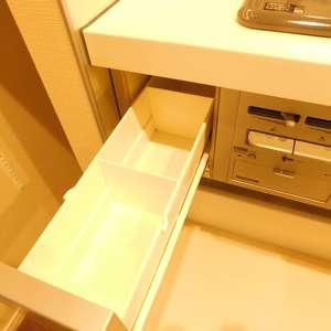 ライオンズガーデン哲学堂(1階,4580万円)のキッチン
