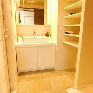 ライオンズガーデン哲学堂(1階,4580万円)の化粧室・脱衣所・洗面室
