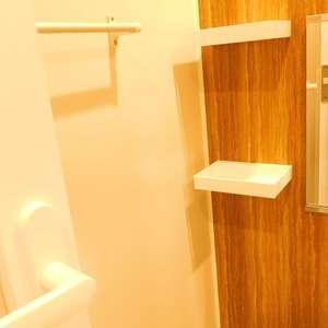 ライオンズガーデン哲学堂(1階,4580万円)の浴室・お風呂
