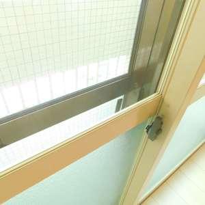 シルバープラザ新宿第2(5階,3199万円)の洋室