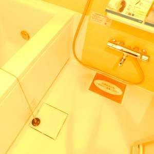 シルバープラザ新宿第2(5階,3199万円)の浴室・お風呂