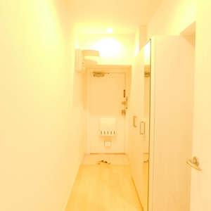 新宿フラワーハイホーム(8階,)のお部屋の玄関