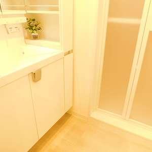 久保田マンション(3階,)の化粧室・脱衣所・洗面室