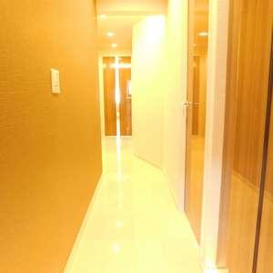 東急ドエルアルス小石川(1階,)のお部屋の玄関