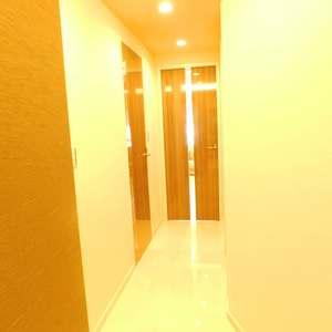 東急ドエルアルス小石川(1階,)のお部屋の廊下