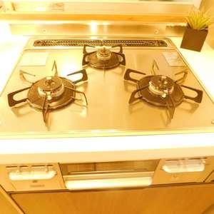 東急ドエルアルス小石川(1階,)のキッチン