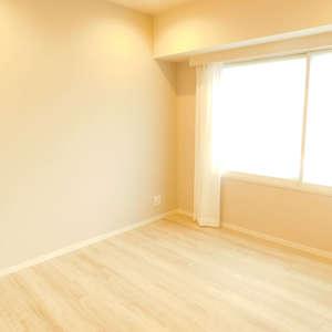 東急ドエルアルス小石川(1階,)の洋室