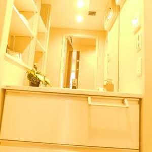 東急ドエルアルス小石川(1階,)の化粧室・脱衣所・洗面室