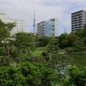 プレストマーロ両国の近くの公園・緑地