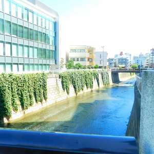 グレイス高田馬場の近くの公園・緑地