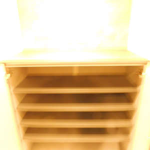 フォレステージ西早稲田(4階,3580万円)のお部屋の玄関