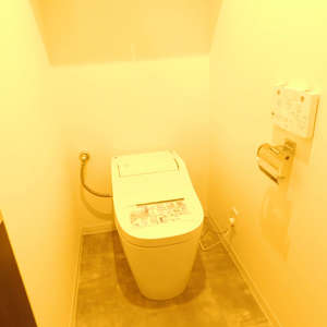 スカイコート池袋第2(3階,2980万円)のトイレ