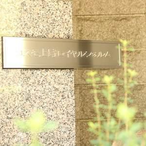 コスモ上野ロイヤルフォルムのマンションの入口・エントランス