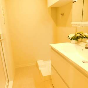 エムブランド新宿戸山公園(4階,)の化粧室・脱衣所・洗面室