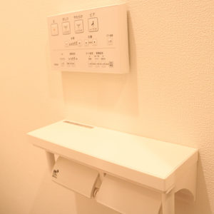 CQレジデンシャル上野(3階,3449万円)のトイレ