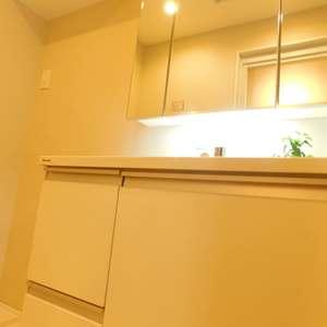 大塚台ハイツ(2階,)の化粧室・脱衣所・洗面室
