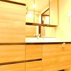 エクセル立教前(2階,4980万円)の化粧室・脱衣所・洗面室
