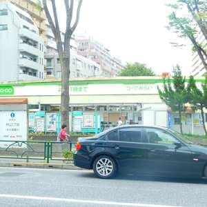 エムブランド新宿戸山公園の周辺の食品スーパー、コンビニなどのお買い物