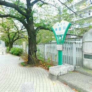 北新宿サマリヤマンションの近くの公園・緑地