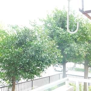 高田馬場住宅(1階,)のお部屋からの眺望