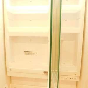 東中野台ローヤルコーポ(3階,)の化粧室・脱衣所・洗面室