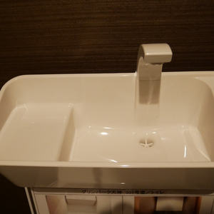 グリーンパーク天神(5階,4680万円)のトイレ