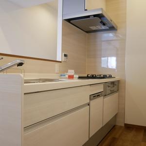 グリーンパーク天神(5階,4680万円)のキッチン