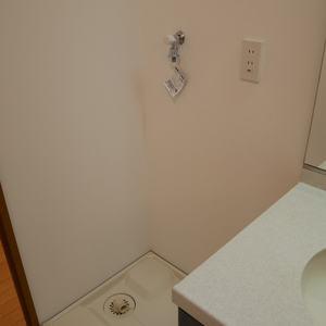 セントレー亀戸(3階,)の化粧室・脱衣所・洗面室