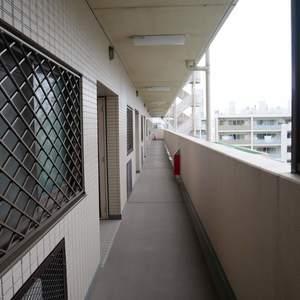 プリメール柳島(6階,)のフロア廊下(エレベーター降りてからお部屋まで)