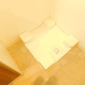 ライオンズマンション護国寺(9階,)の化粧室・脱衣所・洗面室