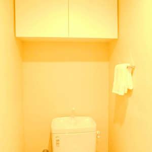 スカイコート文京新大塚(6階,4180万円)のトイレ