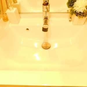 新神楽坂ハウス(1階,4980万円)の化粧室・脱衣所・洗面室