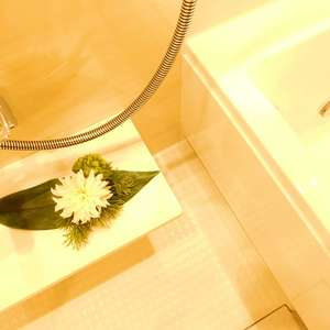 新神楽坂ハウス(1階,4980万円)の浴室・お風呂