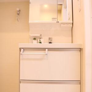 シャトレ市ヶ谷(8階,)の化粧室・脱衣所・洗面室