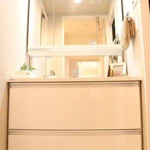シャトレ市ヶ谷(5階,)の化粧室・脱衣所・洗面室