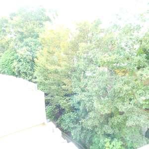 パシフィック西早稲田(6階,)の洋室(2)