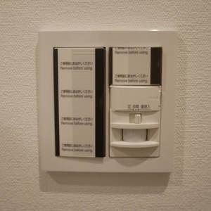 エスバイエルマンション亀戸(5階,3199万円)のお部屋の玄関