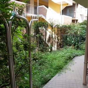 エスバイエルマンション亀戸(1階,)のバルコニー