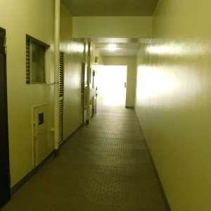 高田馬場住宅(2階,)のフロア廊下(エレベーター降りてからお部屋まで)